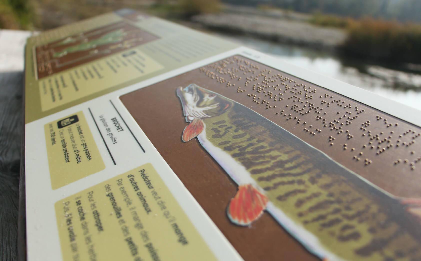 signalétique accessible en braille et falc pour le marais de l'etournel